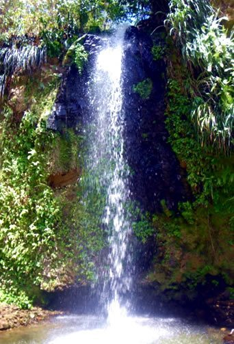 waterfall_tour_st-lucia
