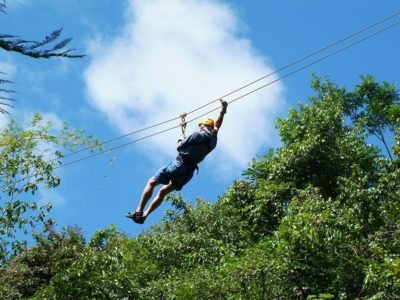 Saint Lucia Canopy Tree Top