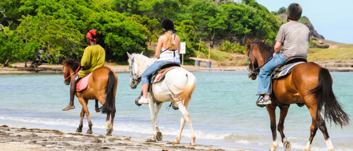 St Lucia Horse Back Riding
